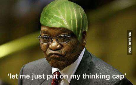 Zumas Thinking Cap